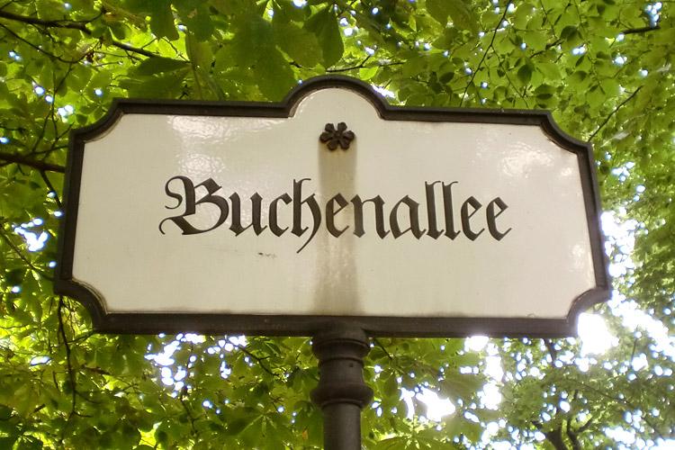 0066_1309_Berlin_Tiergarten_Buchenallee