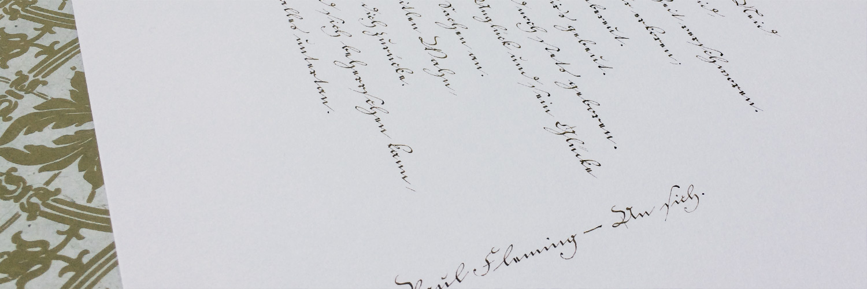 Fleming An Sich Kurrent Titelbild